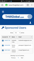 THW Global - THW GLOBAL ADVERTISING Starts on The 4th of July 2016